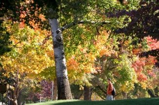 Universities to visit for Fall